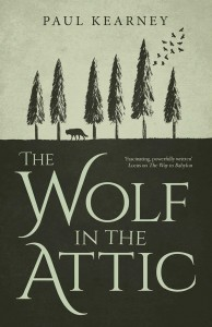 the-wolf-in-the-attic-9781781083628_hr