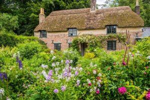 Hardys-Cottage-1351
