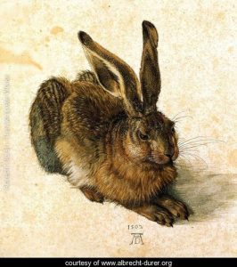 Young-Hare-I